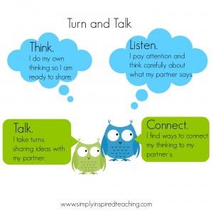 Turn and Talk Owls 2